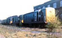 Early diesel casualties. Condemned BTH and NBL 800 bhp type 1 locomotives with D8243 at the head of the line, standing on one of the numerous sidings between some of the many outbuildings that made up part of the massive sprawl that was Stratford in 1968.<br><br>[John Furnevel&nbsp;22/09/1968]