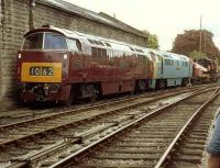D1062 <I>Western Courier</I> together with D1013 <I>Western Ranger</I> at Bridgnorth in May 1981.<br><br>[Colin Alexander&nbsp;16/05/1981]