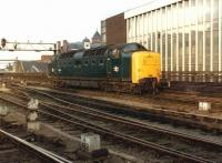 Deltic 55010 (minus nameplate on one side), alongside Newcastle Central station on 11 July 1981. <br><br>[Colin Alexander&nbsp;11/07/1981]
