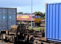 EWS 66074 between containers at Didcot on 12 August 2008.<br><br>[Peter Todd 12/08/2008]