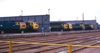 A view from the traverser at Crewe Works with the yellow nose of a class 40 sitting between a clutch of class 47s on 10 June 1971. The predominant livery in this line up is two-tone green.<br> <br><br>[John McIntyre&nbsp;10/06/1971]