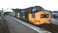 37 362 <I>Dounreay</I> waits at Thurso in July 1985 at the head of a train for Inverness.<br><br>[David Panton&nbsp;/07/1985]