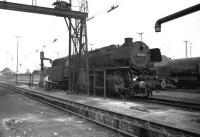 A DB class 043 2-10-0 locomotive taking water at Rheine shed in 1976 as the fireman stands beside the engine reading his newspaper. It took a while to fill up these tenders!<br> <br> <br><br>[John McIntyre&nbsp;//1976]