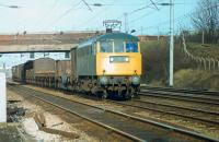 The now sole surviving Class 81, preserved 81002 (E3003), has just taken over this mixed freight at Farington Junction and is on the Up Slow approaching Leyland in January 1981. The train will have been diesel hauled via the S & C to the junction with the WCML where this early AC electric took charge.    <br><br>[Mark Bartlett&nbsp;19/01/1981]