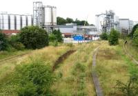 View west over the station site at Cameron Bridge towards the recently upgraded and extended Diageo distillery complex on 22 August 2008. The former Leven Railway route to Thornton Junction runs off to the right. Discussions have taken place regarding the possible reopening of the section to handle future rail based freight traffic at the distillery. Such a move would also give added impetus to the proposal to reopen the line through to Levenmouth, currently being pursued by the local authority in conjunction with Transport Scotland.   <br><br>[John Furnevel&nbsp;22/08/2008]