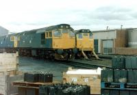 A <I>battery</I> of Type 2s at Eastfield on 27 June 1981.<br><br>[Colin Alexander&nbsp;27/06/1981]