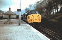 Scene at Bridge of Orchy in 1983 with a 37 hauled northbound freight crossing a passenger train standing at the southbound platform.<br><br>[Colin Alexander&nbsp;//1983]