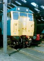 A class 31 locomotive looking fresh from a works visit stands inside Doncaster shed on 31 July 1982.<br><br>[Colin Alexander&nbsp;31/07/1982]