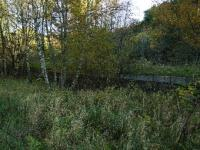 The remains of the goods platform at Drummuir. A set of buffer stops still remains here.<br><br>[John Gray&nbsp;22/10/2008]