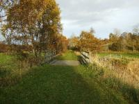A view along the trackbed about a mile south of Grantown-on-Spey East on the way to Nethy Bridge.<br><br>[John Gray&nbsp;22/10/2008]