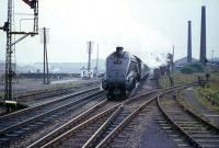 <I>Keep well back from the platform edge</I>... as A4 Pacific 60024, <I>Kingfisher</I>, rapidly approaches Cumbernauld with the 07.10 three hour express from Aberdeen in August 1965.<br><br>[G W Robin&nbsp;03/08/1965]