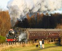 BR Standard class 4MT 80105 restarts an SRPS <I>Santa Special</I> at Kinneil on Saturday 6 December.<br><br>[Brian Forbes&nbsp;06/12/2008]