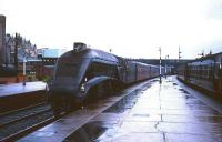 Gresley A4 Pacific no 60019 <I>Bittern</I> coasts into a rainsoaked platform at Stirling station in 1965 with the 7.10am Aberdeen - Buchanan Street train.<br><br>[Robin Barbour Collection (Courtesy Bruce McCartney)&nbsp;30/10/1965]