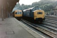 A class 37 stands alongside a class 101 DMU for Lowestoft at Ipswich on 29 July 1981.<br><br>[Colin Alexander&nbsp;29/07/1981]