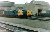 Shed scene at 65A Eastfield in June 1981.<br><br>[Colin Alexander&nbsp;27/06/1981]