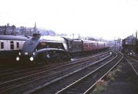 A4 Pacific 60019 <I>Bittern</I> leaves Stirling in 1965 with an Aberdeen - Buchanan Street train.<br><br>[Robin Barbour Collection (Courtesy Bruce McCartney)&nbsp;//1965]
