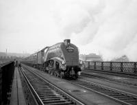 The RCTS/SLS <I>Jubilee Requiem</I> of 24 October 1964 was organised to mark the end of A4 running on the London - Newcastle route and was hauled throughout by 60009 <I>Union of South Africa</I>. The train reached Newcastle Central via the High Level Bridge and returned via the King Edward Bridge, on which it is seen here heading back to Kings Cross. [See image 27005]<br><br>[Robin Barbour Collection (Courtesy Bruce McCartney)&nbsp;24/10/1964]