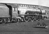 <I>Whenever you're ready ma'am....</I>  46225 <I>Duchess of  Gloucester</I> prepares to leave Upperby shed in the early 1960s and make the short trip to Carlisle station, prior to relieving one of her sister locomotives on arrival from Glasgow Central.<br> <br> <br><br>[Robin Barbour Collection (Courtesy Bruce McCartney)&nbsp;//]
