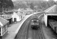Looking east over the Boat of Garten - Aberdeen platform at Craigellachie in the early 1960s, with the Elgin platforms over to the left. The station opened as Strathspey Junction in July 1863 and finally closed to passengers in May 1968. <br><br>[Robin Barbour Collection (Courtesy Bruce McCartney)&nbsp;//]