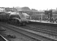 All eyes turn from the Deltic standing at Doncaster with an ECML service, to see A4 Pacific 60033 <I>Seagull</I> rushing past on the up through line with a non-stop for Kings Cross. The date is thought to be 28 July 1962 and the train most likely the 12.15pm Newcastle - Kings Cross. <br> <br><br>[K A Gray&nbsp;28/07/1962]