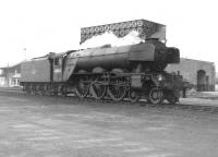 Gresley A3 Pacific 60084 <I>Trigo</I> photographed c. 1962 on shed at 55H Leeds Neville Hill.<br><br>[David Pesterfield&nbsp;//1962]