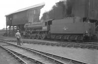 Ex-WD Austerity 2-8-0 no 90020 stands at the coaling stage at Ferryhill shed in July 1963.<br><br>[Colin Miller&nbsp;/07/1963]