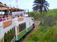 The St Kitts narrow gauge Scenic Railway, with 6 double-deck carriages using the former sugar cane plantation lines. The man in the green and white shirt is part of a trio singing traditional songs to the passengers. [Bit like the last train to Cambuslang on Sat night: Ed.]<br> <br><br>[Brian Smith&nbsp;14/03/2009]