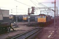 08788, now the Inverness shunter, is glimpsed here in 1979 stabled at Bescot Depot alongside 56045, later in service as Fastline's 56301 and now preserved. Class 25, Bo-Bo Type 2, 25300 rumbles through with a freight on the line behind the station platform having arrived from the north. This loco was less fortunate, being withdrawn from Crewe in 1985 and cut up at Doncaster the following year. <br><br>[Mark Bartlett&nbsp;18/04/1979]