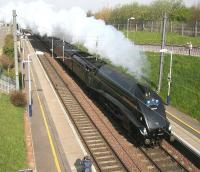 Gresley A4 Pacific no 60009 <I>Union of South Africa</I> heading  south through Musselburgh on 14 April with the returning <I>Great Britain II</I> railtour.<br><br>[John Furnevel&nbsp;/04/2009]