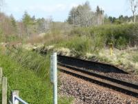 The site of Grange station on the Aberdeen - Inverness line with only the remains of the down platform left. <br> <br><br>[John Williamson&nbsp;19/04/2009]