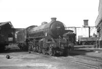 Thompson B1 4-6-0 no 61019 <i>Nilghai</i> photographed on Gateshead shed circa 1965.<br><br>[K A Gray&nbsp;//1965]