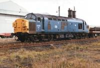 A trainload of steel sections stands alongside Skinningrove rolling mill in August 1985 behind 37013 sporting the West Highland <I>Scottie</I> symbol.<br><br>[David Pesterfield&nbsp;21/08/1985]
