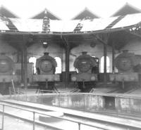 A lineup of J94s (left to right are 68010, 68060, 68051 and 68011) at rest in the half roundhouse at 51A Darlington Shed on 5 April 1964.<br><br>[David Pesterfield&nbsp;05/04/1964]