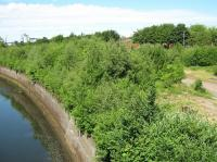 Looking across the overgrown site of Partick Central station in June 2009, view north from Benalder Street bridge.<br><br>[Alistair MacKenzie&nbsp;23/06/2009]