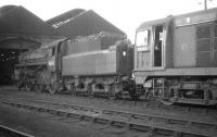 BR Standard class 4 no 76000 and EE Type 1 no D8119 stand outside Motherwell shed c 1966.<br><br>[K A Gray&nbsp;//1966]