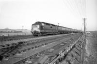 A <I>Deltic</I> at speed with a Kings Cross - Edinburgh train on the ECML near Drem in the 1960s. North Berwick Law stands in the left background. <br><br>[Robin Barbour Collection (Courtesy Bruce McCartney)&nbsp;//]