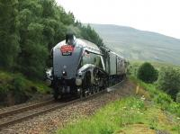 A4 Pacific no 60009 <I>Union of South Africa </I> pictured between Dalwhinnie and Newtonmore on 4 July 2009 with the <I>Osprey Express</I> <br><br>[John Gray&nbsp;04/07/2009]