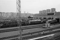A view of the north end of Eastfield MPD on 16 September 1972 showing the vast array of locos awaiting their next duty. The Photo is taken from the ex Caledonian Railway viaduct that carried the switchback railway over the shed roads and E&G mainline. <br><br>[John McIntyre&nbsp;16/09/1972]