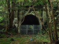 About half a mile west of St Fillans is this tunnel. Both portals are now fenced off. July 2009.<br><br>[John Gray&nbsp;25/07/2009]