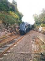 60009 <I>Union of South Africa</I> takes the Stirling line at Hilton Junction in 1993<br><br>[Ken Browne&nbsp;//1993]