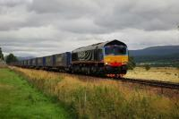 Malcolm Rail liveried 66412 southbound near Kingussie with the Stobart Rail container train.<br><br>[John Gray&nbsp;01/09/2009]