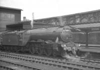 A3 Pacific no 60088 <I>Book Law</I> stands at Carlisle platform 4 with the up <I>Thames-Clyde Express</I> in the summer of 1960.<br><br>[K A Gray&nbsp;03/06/1960]