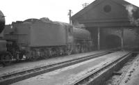 B1 4-6-0 no 61359 seems to be peering into the gloom of St Margarets shed in February 1962. The locomotive was withdrawn by BR at the end of the following year.<br><br>[K A Gray&nbsp;03/02/1962]