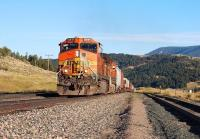 BNSF Dash 9-44CW units 4441 and 1004 (with the assistance of four other locomotives unseen in this picture) get to grips with the eastern slope of the 5,800 foot Bozeman Pass between Livingston and Bozeman, Montana in September 2009. <br> <br><br>[Andy Carr&nbsp;21/09/2009]