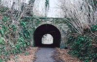This covered way on the Bath side of Midford S&D looks nice and provides shelter from rain. Since construction of the Two Tunnels Trail in 2013, the surface of the trackbed is smooth tarmac from here to the far end of Devonshire tunnel.<br><br>[Ken Strachan 21/03/2008]