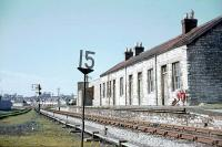 This could be classified as GWR Cheddar Valley Line or Somerset and Dorset. Wells Priory Road was the S&D station in Wells but on the GWR line (GWR trains didn't stop, apparently).<br /><br> <br /><br> This was taken in 1963 - the GWR line to Tucker Street and Yatton curves right; the S&D line to Glastonbury turned left. Lovely selection of signals!<br /><br> <br /><br> [Railscot note: Interestingly the railway clearing house map of 1914 shows a very short section of the S&D between the two sections of GWR in Wells.]<br><br>[John Thorn&nbsp;//1963]