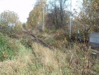When I last visited the Denby opencast disposal point, in 1995, it was still in regular use but it closed in 1999. In the 1990s it regularly saw Class 56 and Class 58 locos on the coal trains. Ten years after closure the rails are still in situ and this view from the level crossing shows the start of the run-round loop and its associated point levers. Perhaps the location should be called Kilburn, the name of the passenger station on the opposite side of the level crossing, but that closed in 1930 along with passenger services along this line to Ripley.  <br><br>[Mark Bartlett&nbsp;25/10/2009]