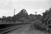 Ham Green Halt was added to the Portishead Branch to serve the nearby  isolation hospital. This view looking towards Pill. Note the 'pagoda'  style shelters.<br><br>[John Thorn&nbsp;/07/1960]