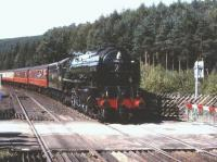 A2 Pacific no 60532 <I>Blue Peter</I> arriving with a southbound train at Levisham�on 3 August 2002.<br> <br><br>[Peter Todd&nbsp;03/08/2002]
