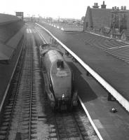 4498 <I>Sir Nigel Gresley</I>, fresh from Crewe Works, heading north through Carnforth in May 1968 bound for Carlisle. The A4's ultimate destination was Glasgow, where the locomotive was due to haul an A4 Society special from Central on 20 May. [see image 20388]<br><br>[David Spaven&nbsp;//1968]
